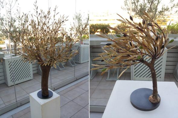 Διάσπαρτες στο χώρο, οι ελιές - γλυπτά του Άγγελου Παναγιωτίδη, ο οποίος είχε φιλοτεχνήσει το έργο Ελιά ο Το δέντρο της Αθήνας για τους Ολυμπιακούς Αγώνες το 2004. © beautyworkshop.gr