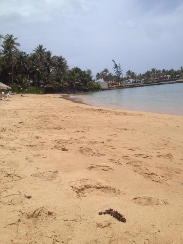 Η παραλία που κάνουμε μπάνιο! © beautyworkshop