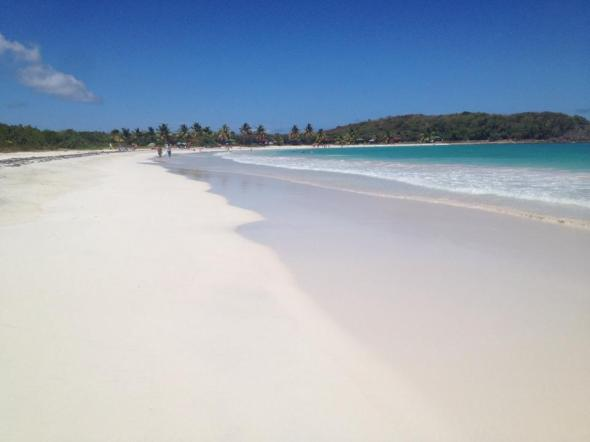 Από το νησάκι Vieques © beautyworkshop